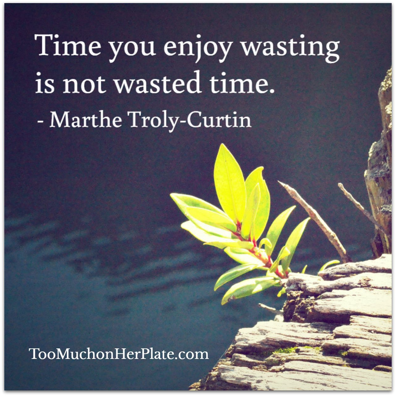 Wasted Time Is Worse Than Wasted Money Quote: Inspiring Quotes To Start Your Day